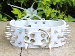 Wholesale Cheap Pitbull Spiked Collars - Wholesale-Colorful Cheap 100% Guarantee Spiked Studded White PU Leather Dog Collars PitBull Mastiff P50-W