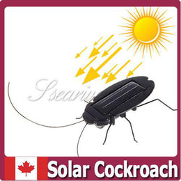 Wholesale Solar Energy Birthday Gifts - Wholesale-Free Shipping Solar Powered Energy Cockroach Toy Robot Insect Bug Educational Kits Fun Birthday Gifts for Children