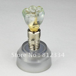 Wholesale Dental Implant Demonstration Models - Wholesale-1 Piece Dental Implant Demonstration Model Teeth Study Teach Model Free Ship