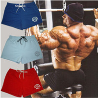 Wholesale Mens Short Yoga - Mens Sport Shorts casual fitness golds gym men workout cotton skinny Gym Boxing Running Yoga fight bodybuilding Shorts for man