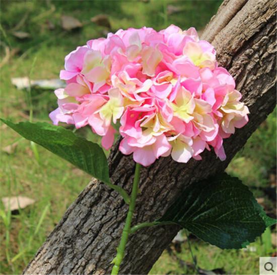 핑크 색상 선택