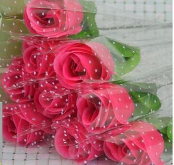 장미 빨강