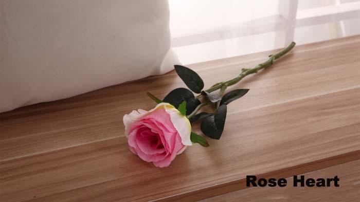 Rose Cuore