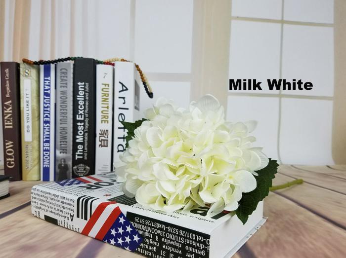 Lait Blanc