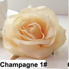 Champagne 1 #