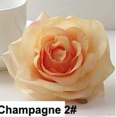 Champagne 2 #