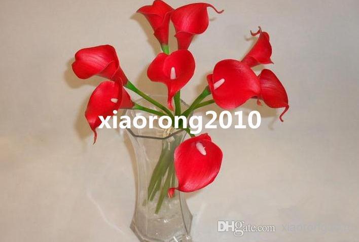 Kırmızı renkli calla lily