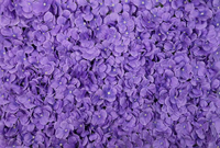 Х фиолетовый