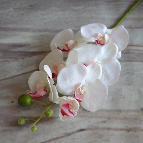 Coeur blanc et rose