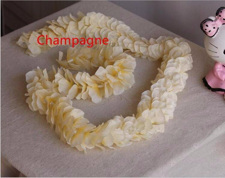شامبانيا