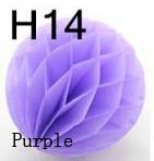 H14 purple