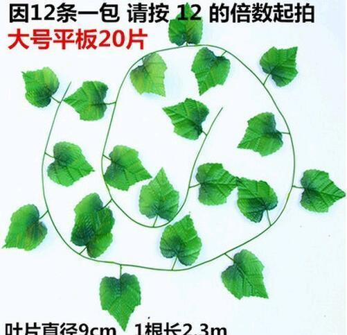 20 folhas e nove centímetros de diâmetro