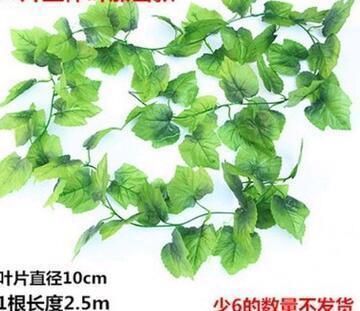 66 folhas e diam eter 10 centímetros