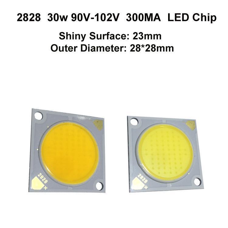 2828 30W 300MA 23MM LED Chip