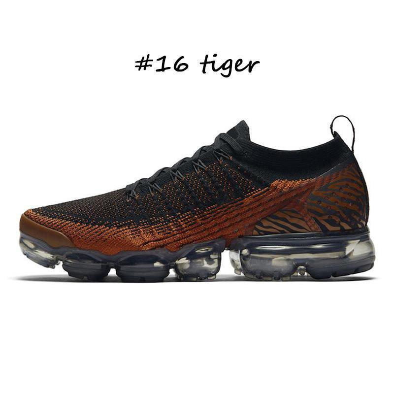 #16 tiger