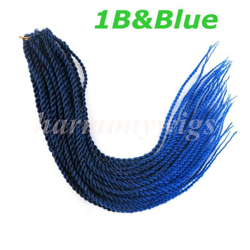 1B&Blue