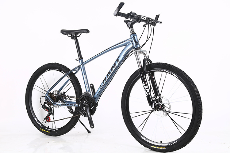 Blue and Gray (21 Speed)