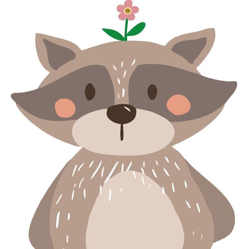 Raccoon 2 #