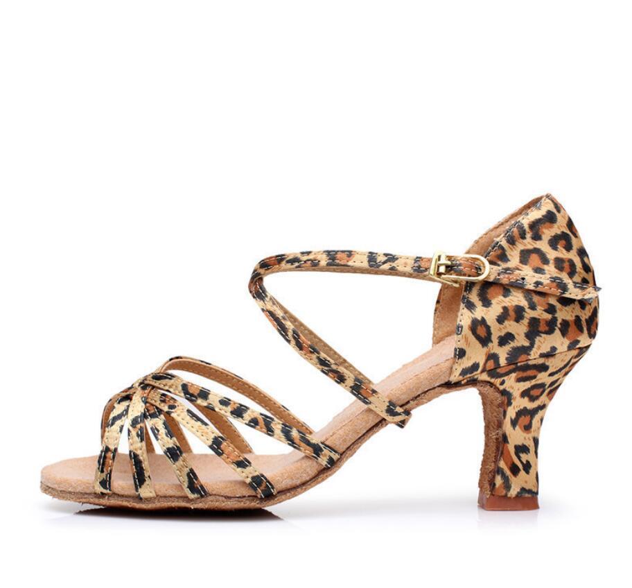 leopardo cinco centímetros
