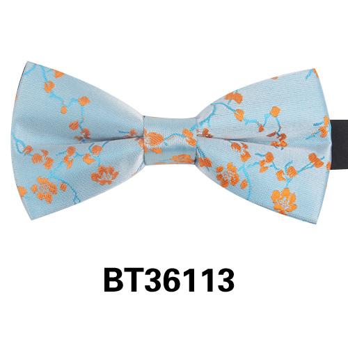 BT36113