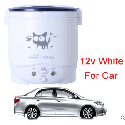 12v branco para o carro