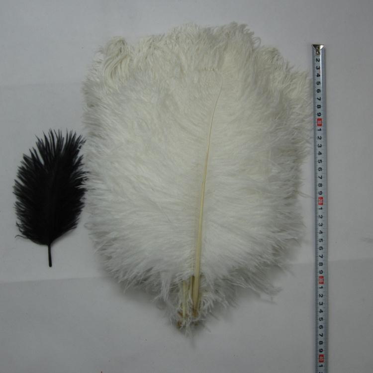 14-16 pollici (35-40cm)