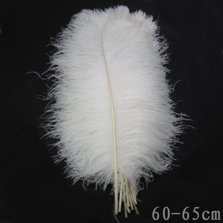 22-24 pollici (55-60cm)