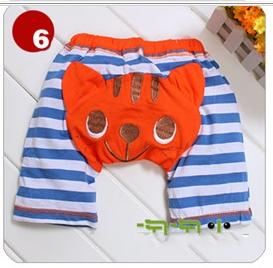 6 orange tiger