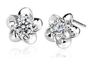 Weißen Diamanten Pflaumenblüte