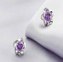 Lila Diamanten Pflaumenblüte
