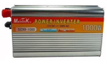 1000W 12V 220V.jpg