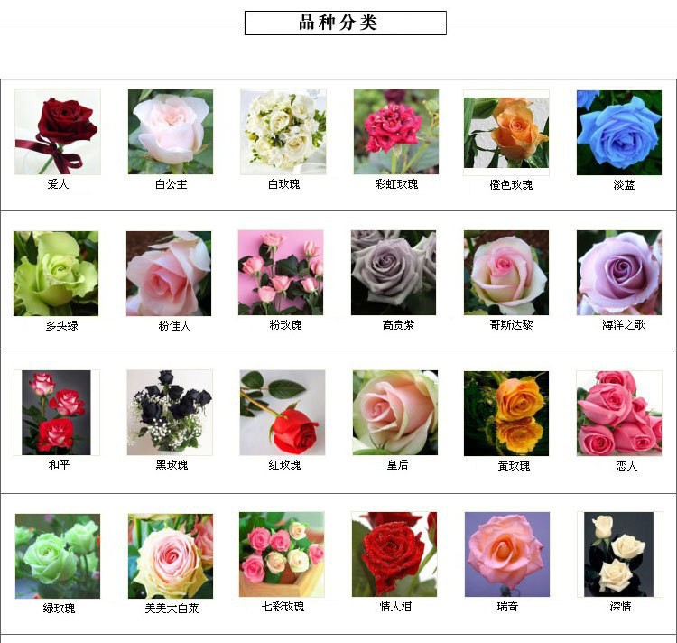 Pictures of different flowers with names my web value pretty flowers 248 mightylinksfo Images
