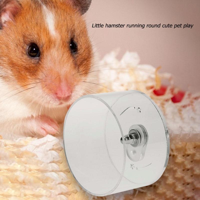 Küçük Hayvan Koşu Şeffaf Akrilik Hamster Tekerlek Pet Malzemeleri Koşu Sessiz Egzersiz Tekerlekler Malzemeleri Şeffaf Küçük Hayvan Hayvanlar