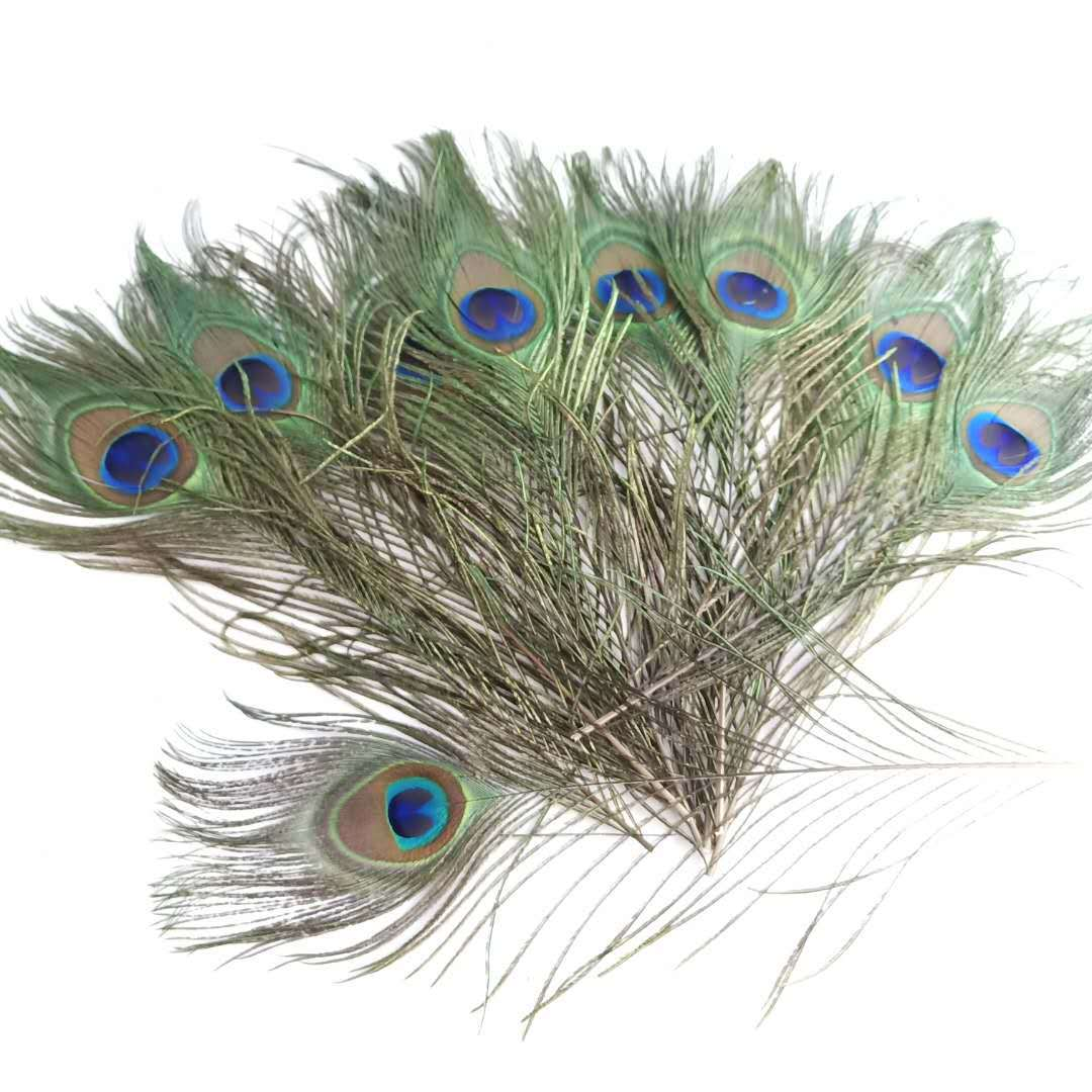 Wholesale10-5000 PCS 10-12inches//25-30cm Beautiful Natural Color Peacock Feather