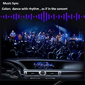 car lights concert