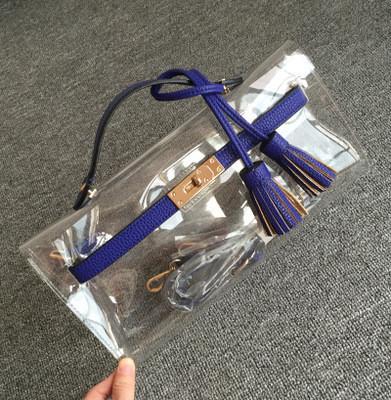 Transparent Handbags (12)