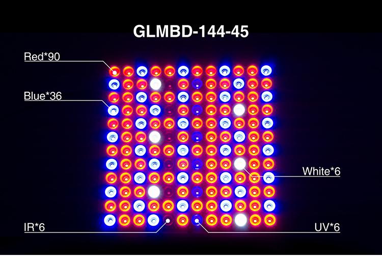 LED GLMBD-+_07-03