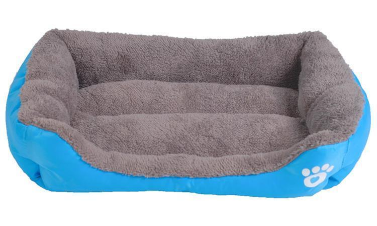 blue dog bed