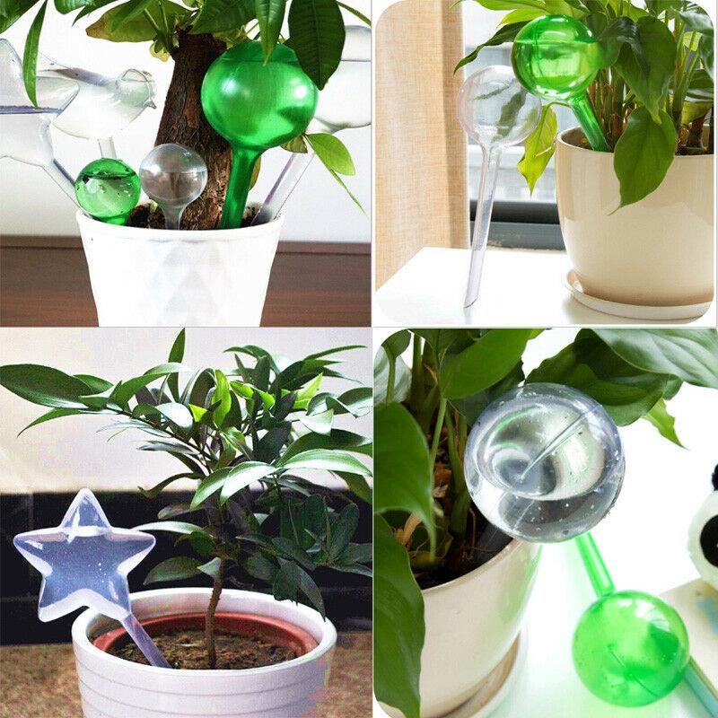 Garten Wasser Zimmerpflanze Blumentopf Vogel Automatisch Selbst Großartig Haus