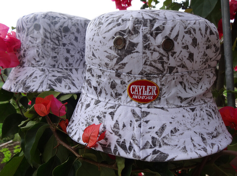 0005-CAYLERSONS s