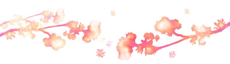 lace_02