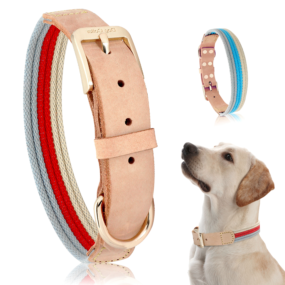 Collar de perro cachorro de clip de hebilla de plástico de nylon Azul Rojo Negro Verde Caqui Rosa