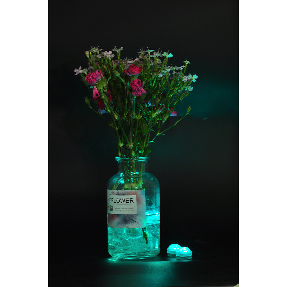 3LED Submersible Light Teal Co