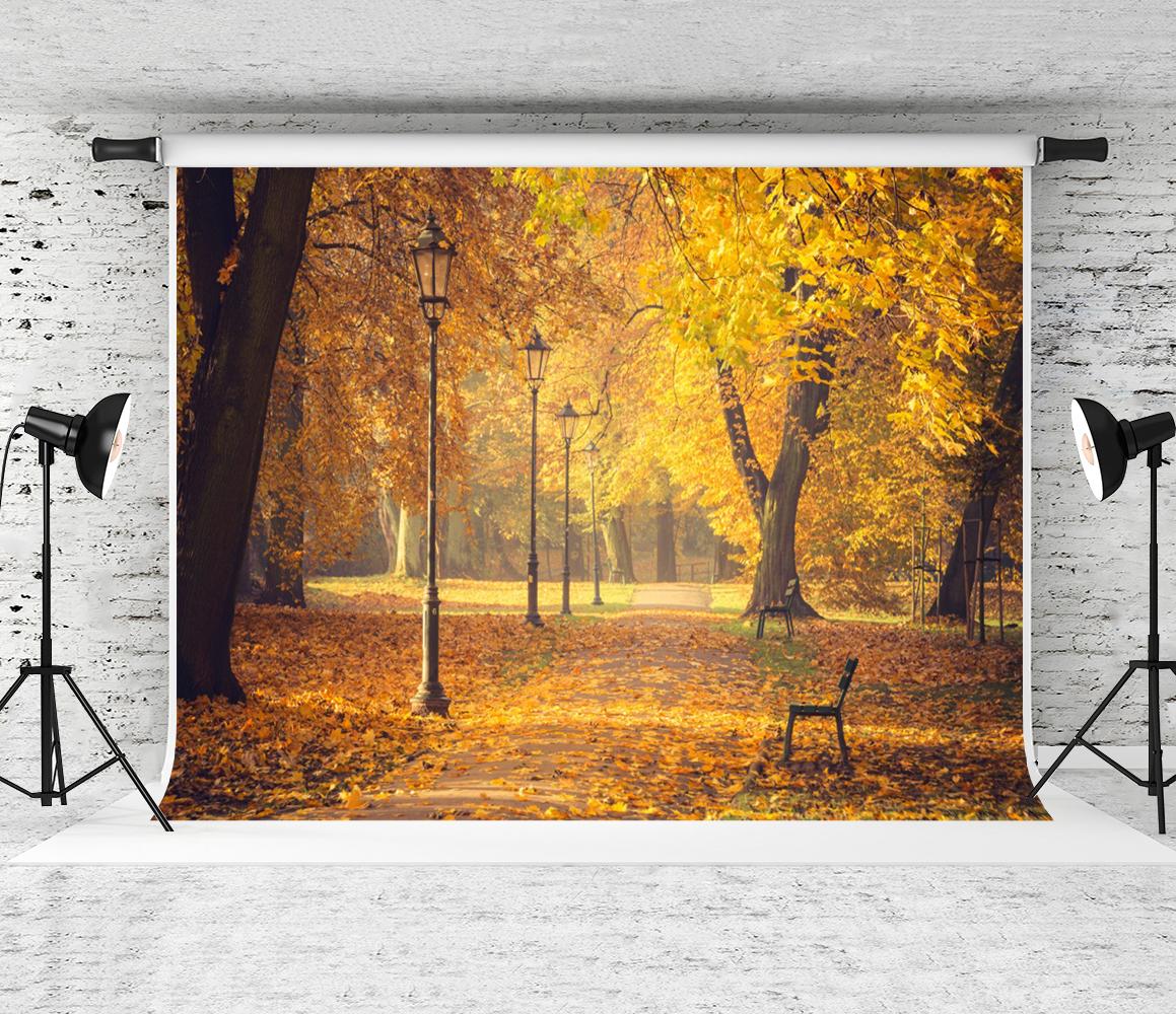 foto de Photographie D'automne Distributeurs en gros en ligne ...