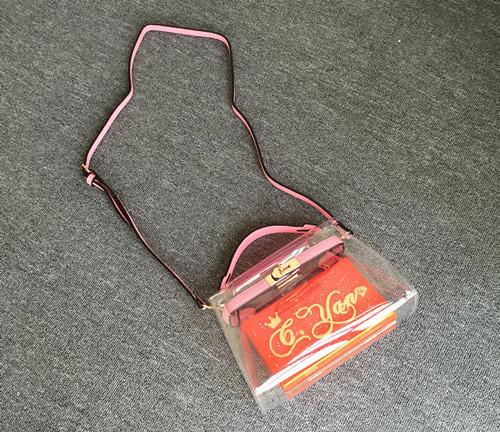 Transparent Handbags (24)