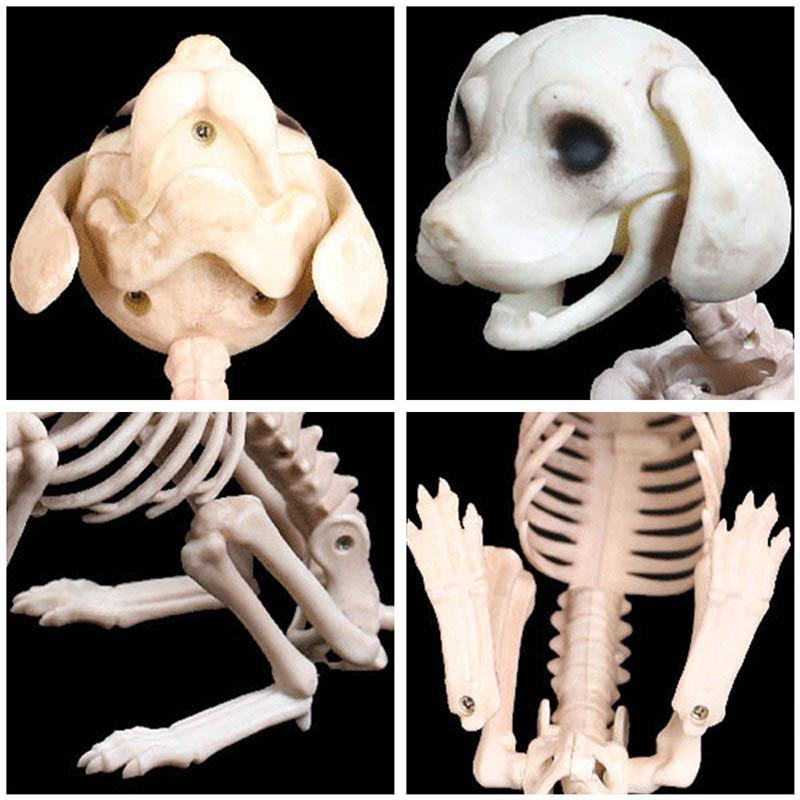 Halloween Decoration Props Animals Skeleton Mouse Dog Cat Skull Bone Ornaments Hallowmas Horror Haunted House Party Decoration (4)