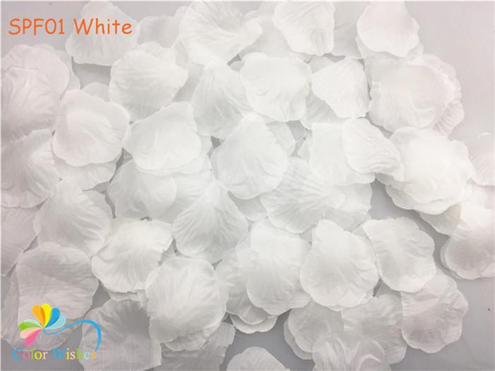 SPF01 White