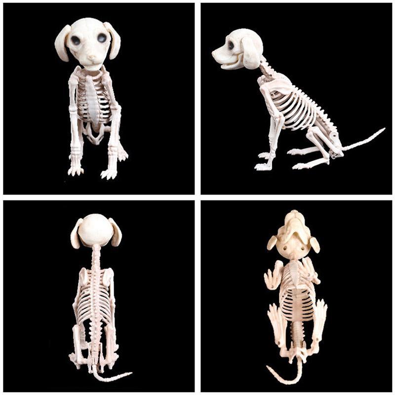 Halloween Decoration Props Animals Skeleton Mouse Dog Cat Skull Bone Ornaments Hallowmas Horror Haunted House Party Decoration (3)