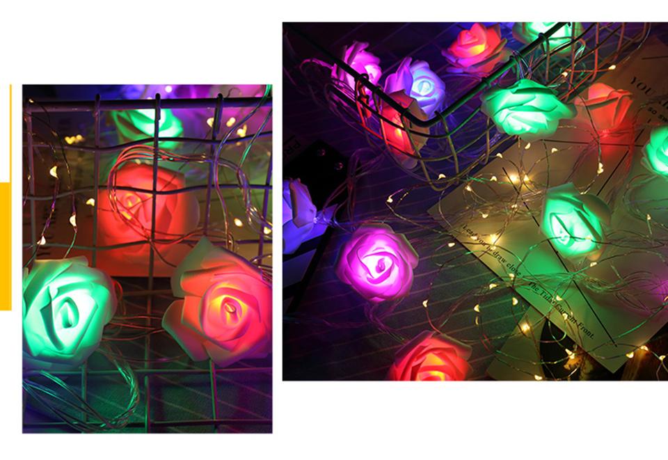 holiday lights (4)