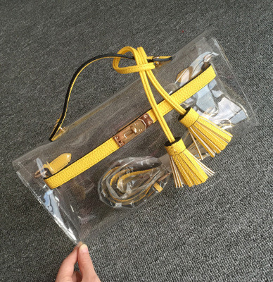 Transparent Handbags (13)